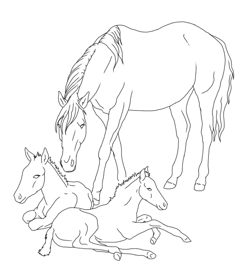 851x938 Mare With Twin Foals Lineart By Rainbowfountains