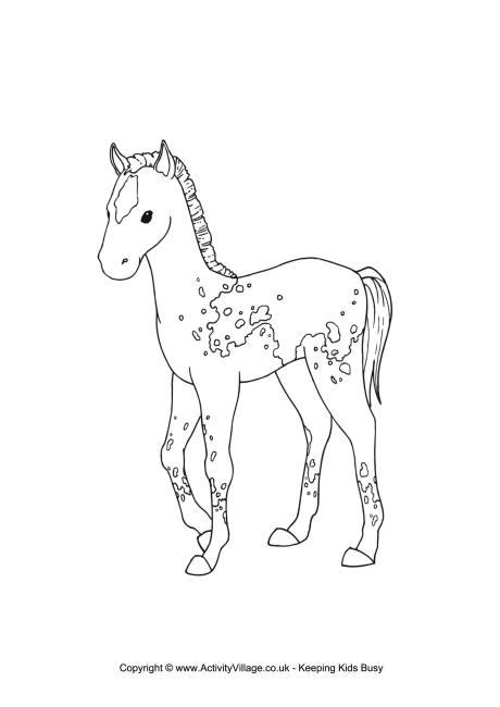 460x650 foal colouring page