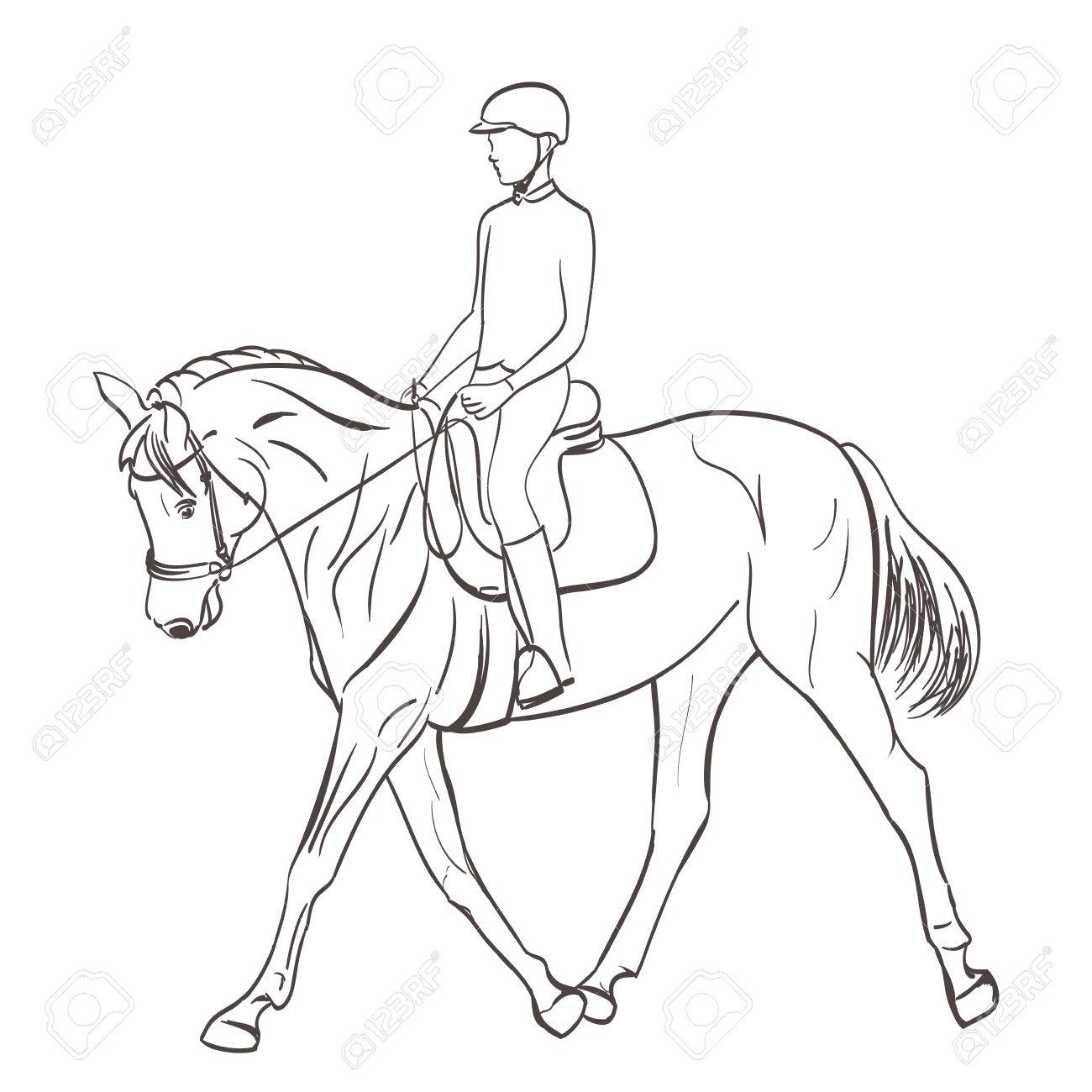 1300x1300 Horse Rider Sketch. Equestrian Theme Vector Illustration Royalty