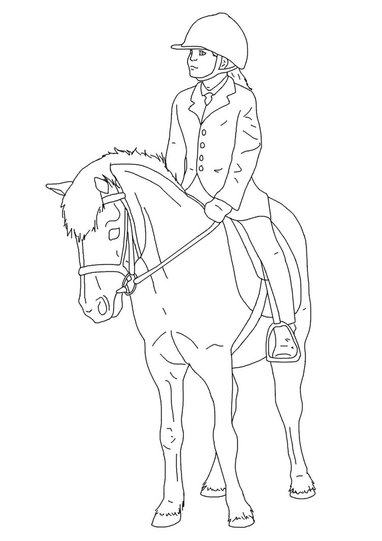 752x1063 Horse And Rider Lines 02 By Equineribbon