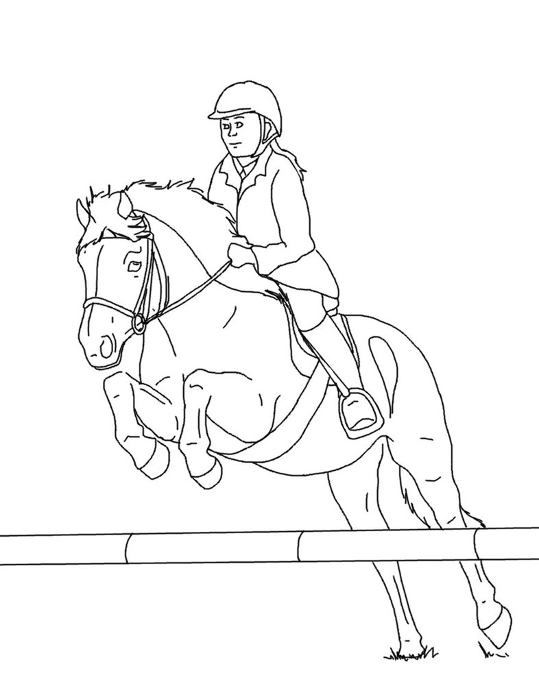 786x1017 Horse And Rider Lines 03 By Equineribbon