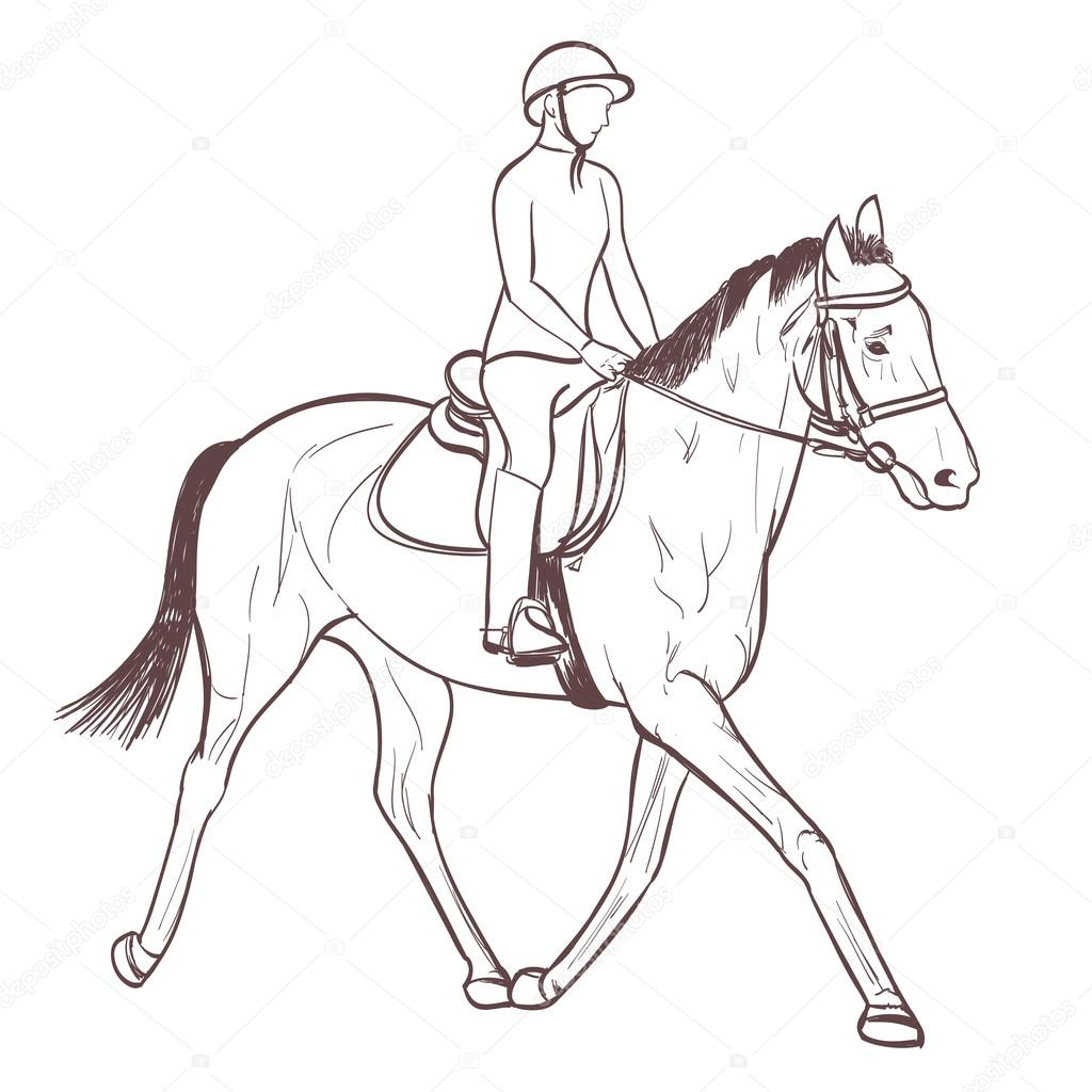 1024x1024 A Horse Rider Drawing. Equestrian Sport Training Line Art Vector