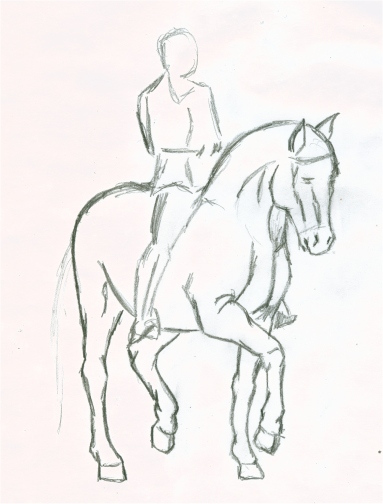 383x504 Horse + Rider Sketch By Asthenie