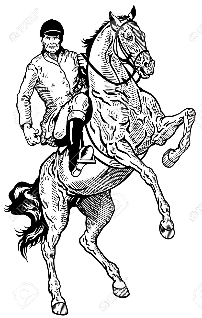826x1300 Horse Rearing With Rider Drawing Horse Rider, Equestrian Sport
