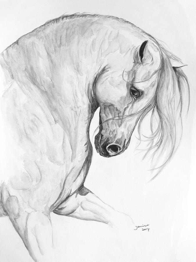 675x900 Sereno Painting By Janina Suuronen Horse Art Horse