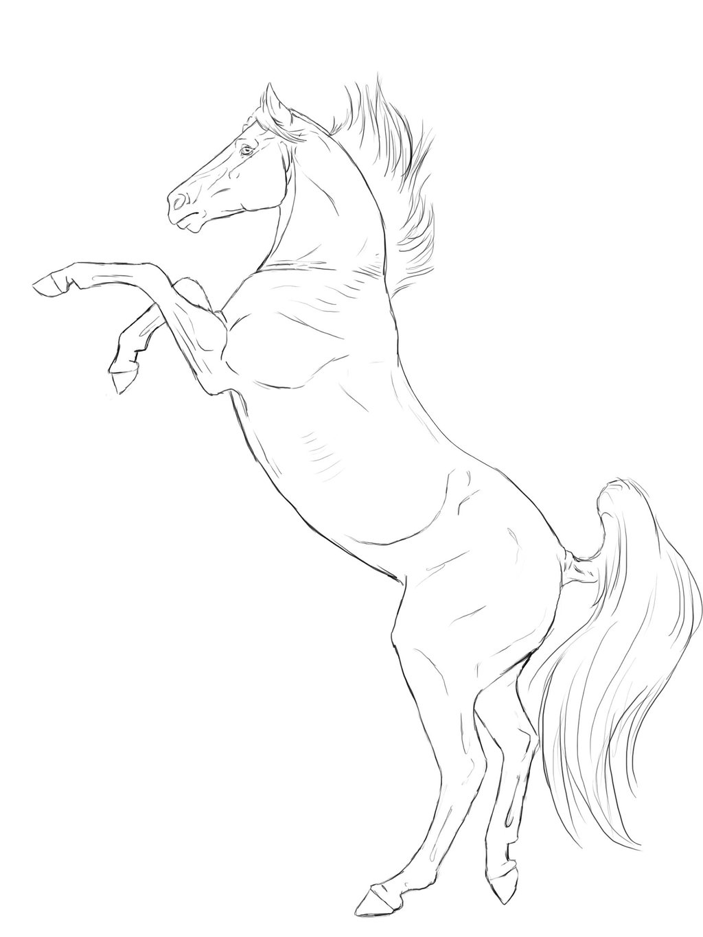 1024x1365 Rearing Horse Line Art Two By