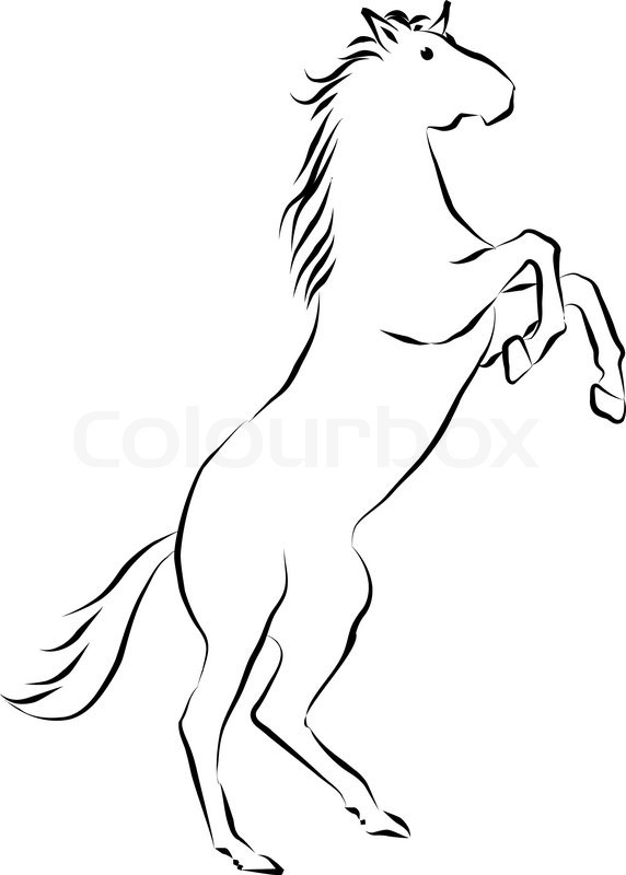 572x800 Black Drawing Sihouette Of Horse Stock Vector Colourbox