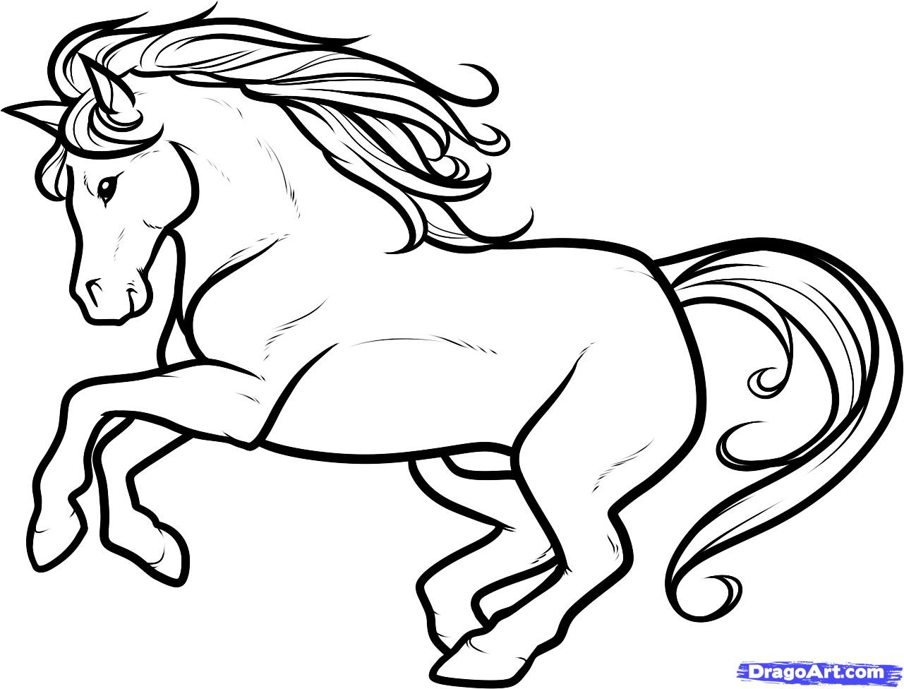 Horse Black And White Drawing at GetDrawings.com | Free for personal ... for Horse Cartoon Drawing  150ifm