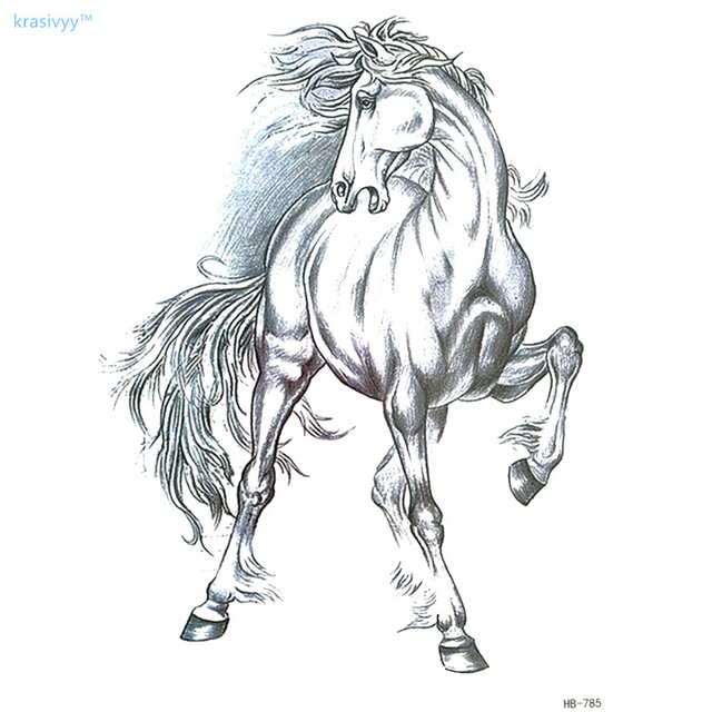 Horse Body Drawing
