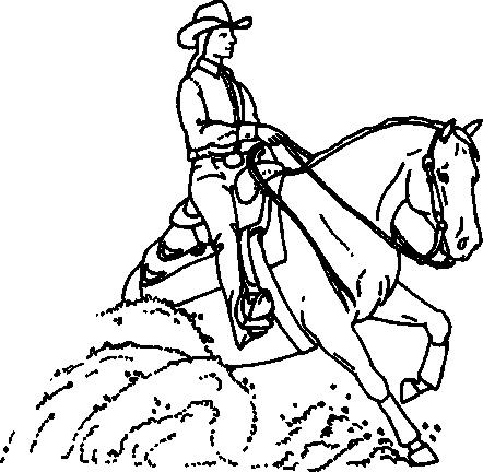 442x432 Halter Horse Drawing And Award