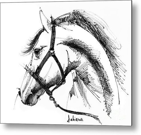 493x470 Horse Face Ink Sketch Drawing Metal Print By Daliana Pacuraru