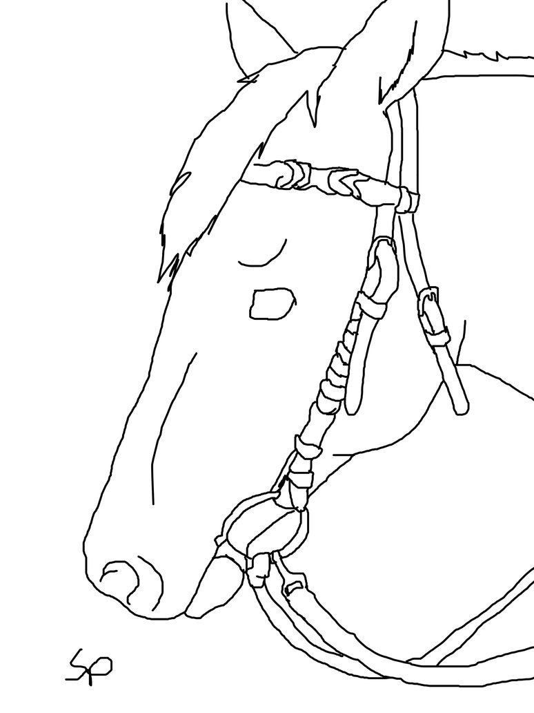 774x1032 Horse Head With Bridle Lineart By Spritrain180
