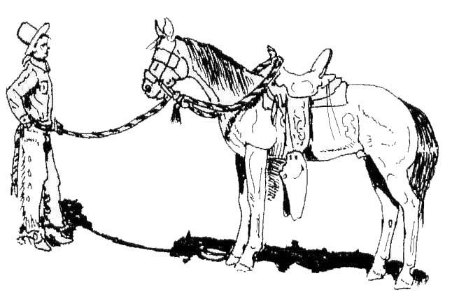 646x428 Preserving The Vaquero Tradition Some Thoughts On The Hackamore