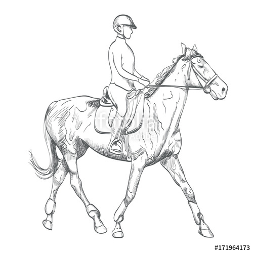 500x500 Hand Drawn Horse Riding Vector Illustration On Equestrian Sports