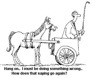 303x253 Always Put The Cart Before The Horse Learning To Lead Learning