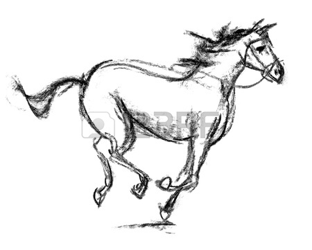 450x361 A Horse Sketch On Paper Stock Photo, Picture And Royalty Free
