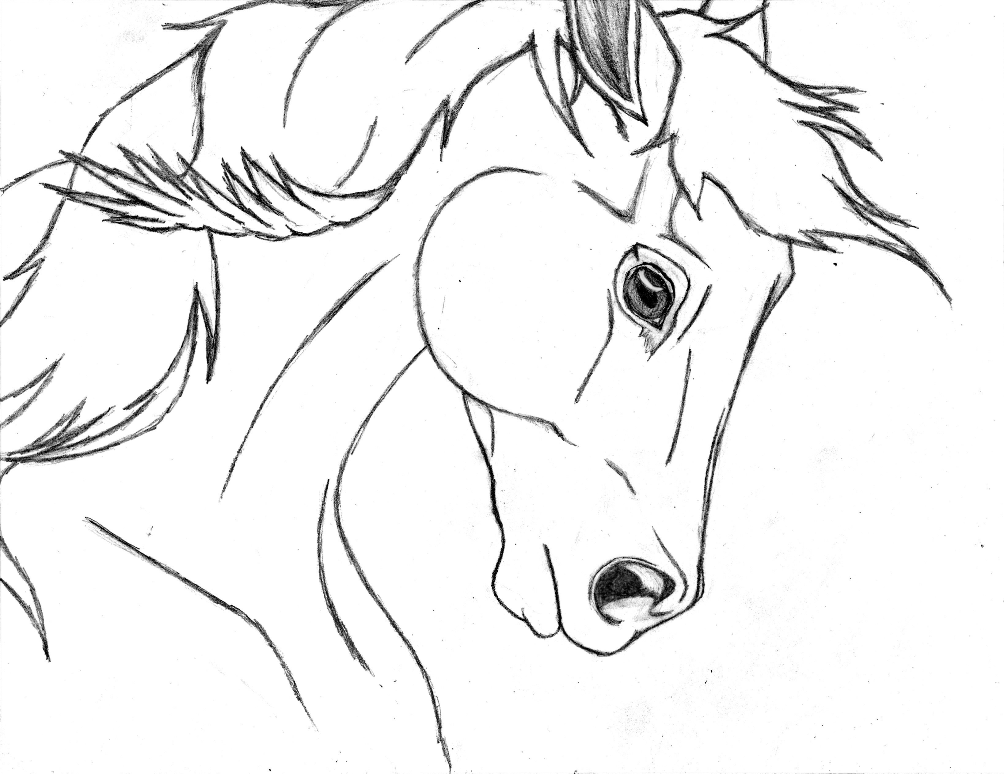 3276x2526 Easy Horse Drawings In Pencil Step By Step Horse Drawing Free