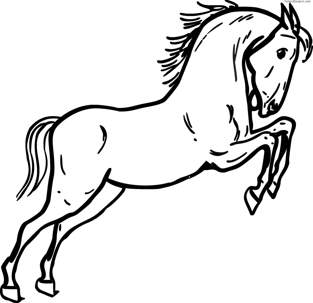 horse drawing black and white at getdrawings com free for personal rh getdrawings com Weswtern Horses of Black and White Clip Art Black and White Horse Clip Art of the Year
