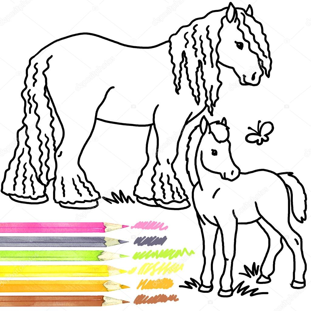 1024x1024 Horse And Foal. Coloring Book Horse And Foal. Horse And Foal