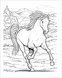 260x327 Wonderful World Of Horses Coloring Book (Dover Nature Coloring