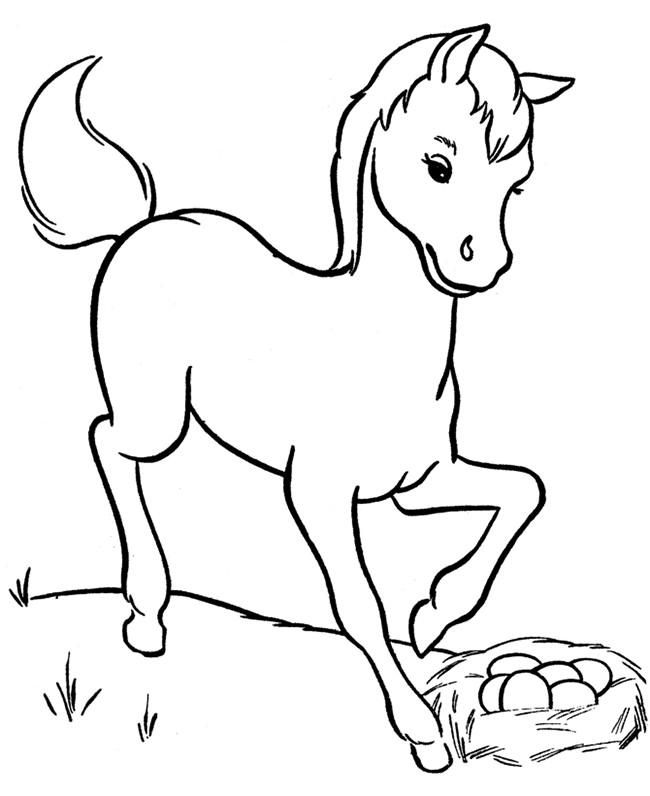 650x796 Horse Template