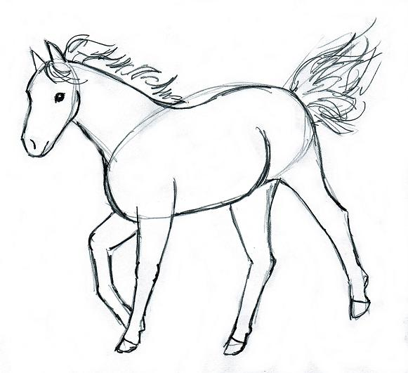581x531 Horse Drawing Step By Step