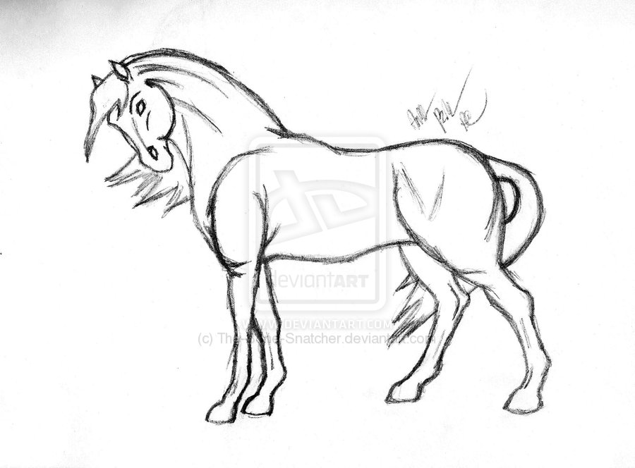 900x664 Horse Drawings Horse Sketch By The Bone Snatcher Horse
