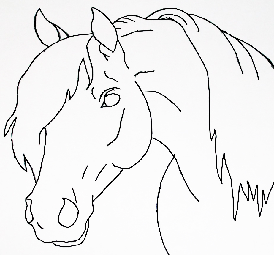 923x858 Simple Horse Head Drawing Easy How To Draw A Horse Head Step By