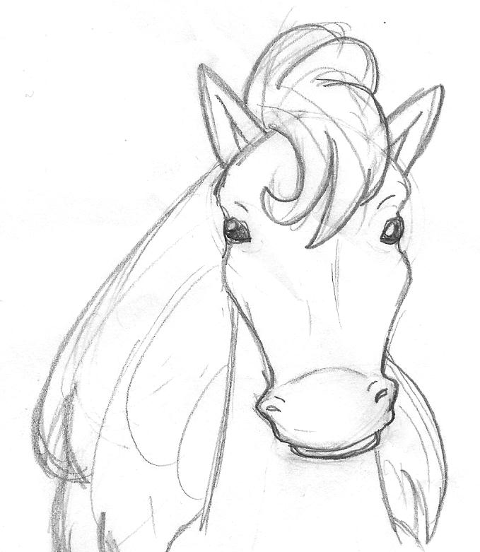 679x781 Drawn Horse Face