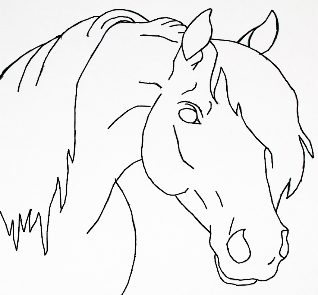 1024x951 Easy Drawing Of Horse Horse Head Lineart Bluemoon124