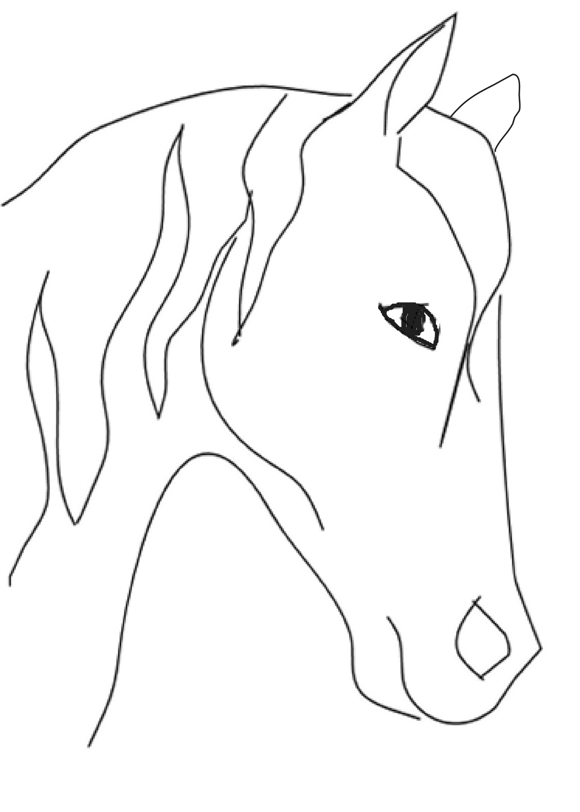 1144x1600 Easy To Draw Horse Head