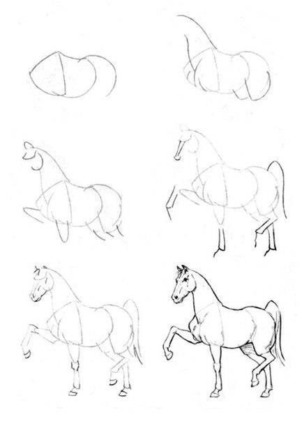 436x604 How To Draw A Horse Drawings Horse, Drawings