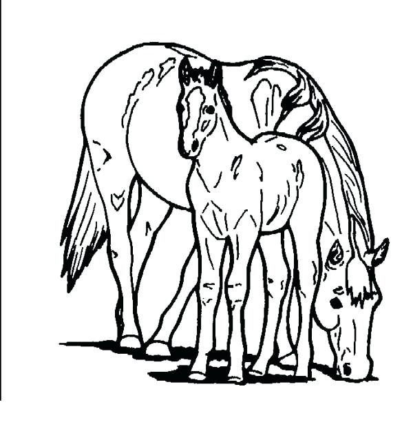 600x613 Great Horse Color Pages Online Best Coloring Ideas On Adult Kids