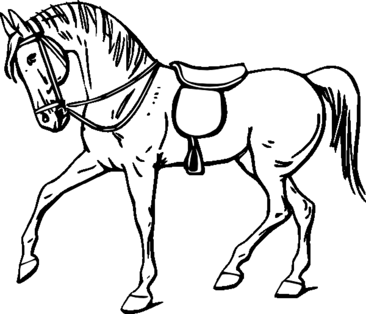 Attractive 1200x1032 Coloring Pictures Of Horses Images My Horse Haven Pinterest