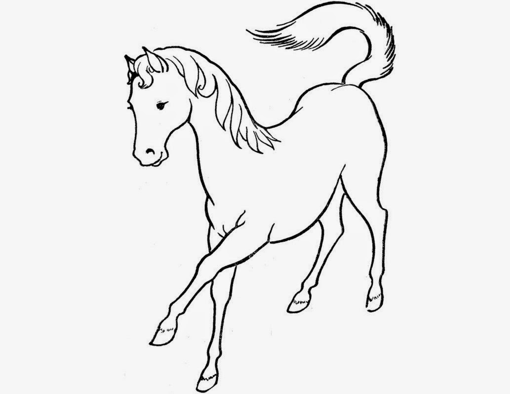 1033x798 Colour Drawing Free Hd Wallpapers Horse For Kids Coloring Page