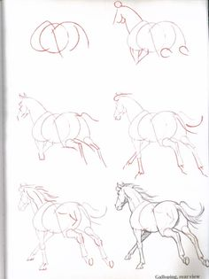 Horse Drawing Games