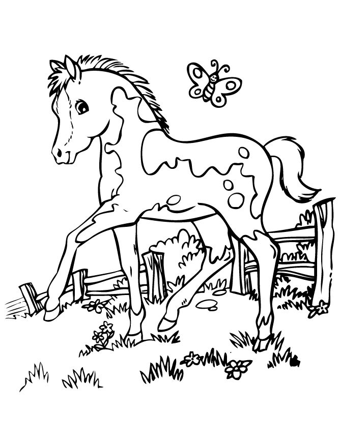 670x867 Horse Colouring Pages Games Tags Horse Colouring Games Easy