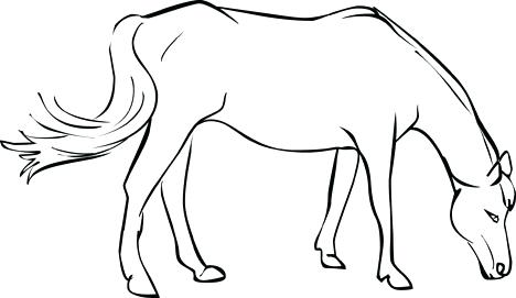 468x271 Horses Pictures To Color Animals Coloring Horse Drawing Animals