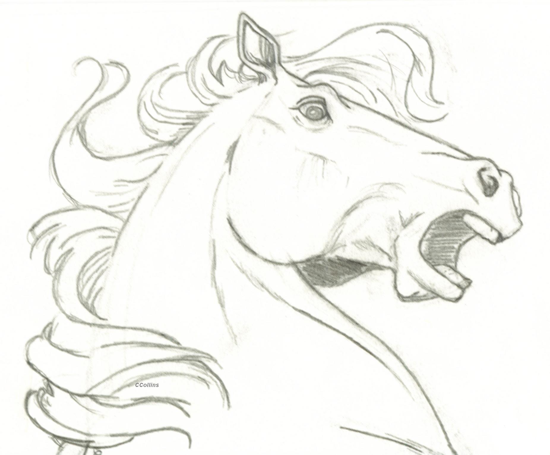 1852x1532 Horse Head Surprise By Ccangel33