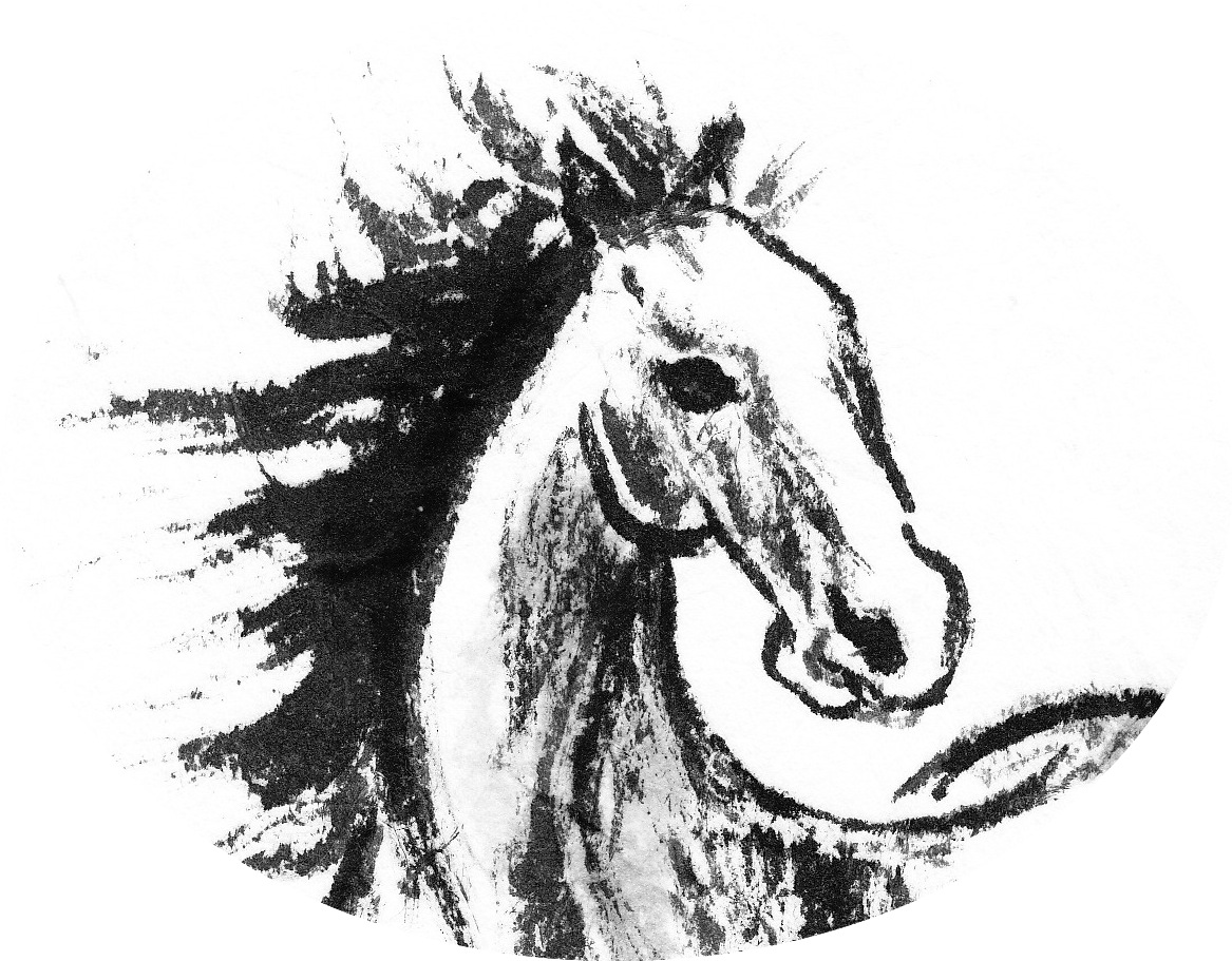 Horse Drawing Head at GetDrawings.com | Free for personal use Horse ...