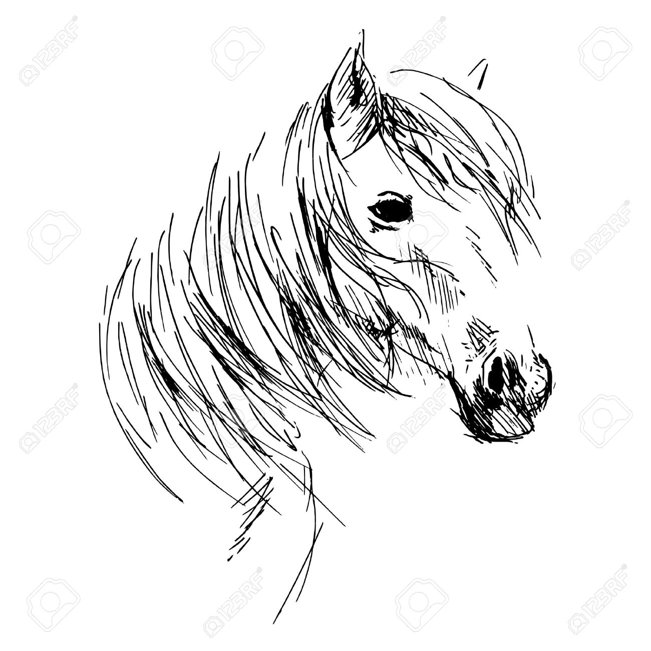 1300x1300 Hand Drawing Horse Head Royalty Free Cliparts, Vectors, And Stock