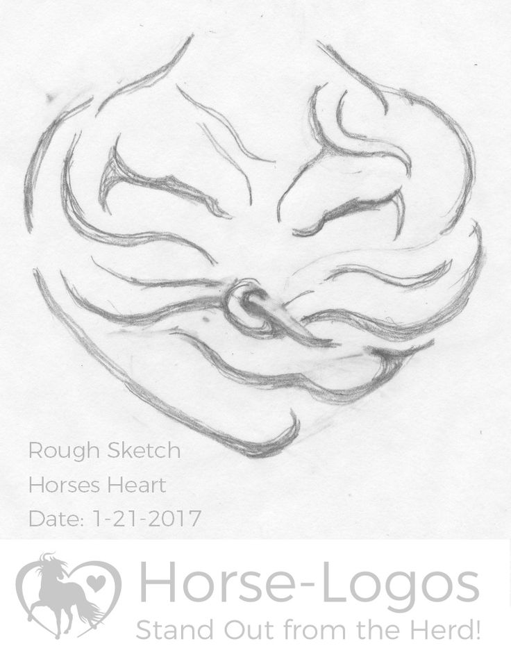 736x956 418 Best Horse Drawings Images On Horse Drawings