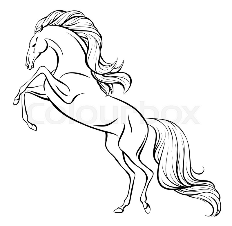 800x779 Outline Vector Drawing Of A Rearing Horse With Long Mane And Tail