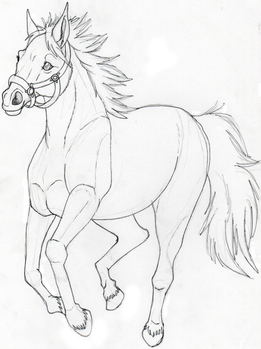 900x1200 A Horse Sketch Not Done By Suenta Deathgod