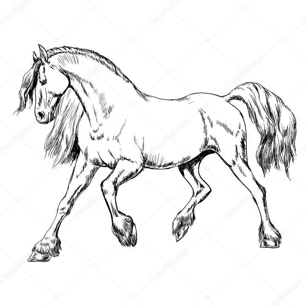 1024x1024 Outline Horse Sketch Stock Vector