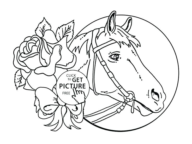 736x551 Mustang Horse Coloring Pages Horse Coloring Pages Printable Horse