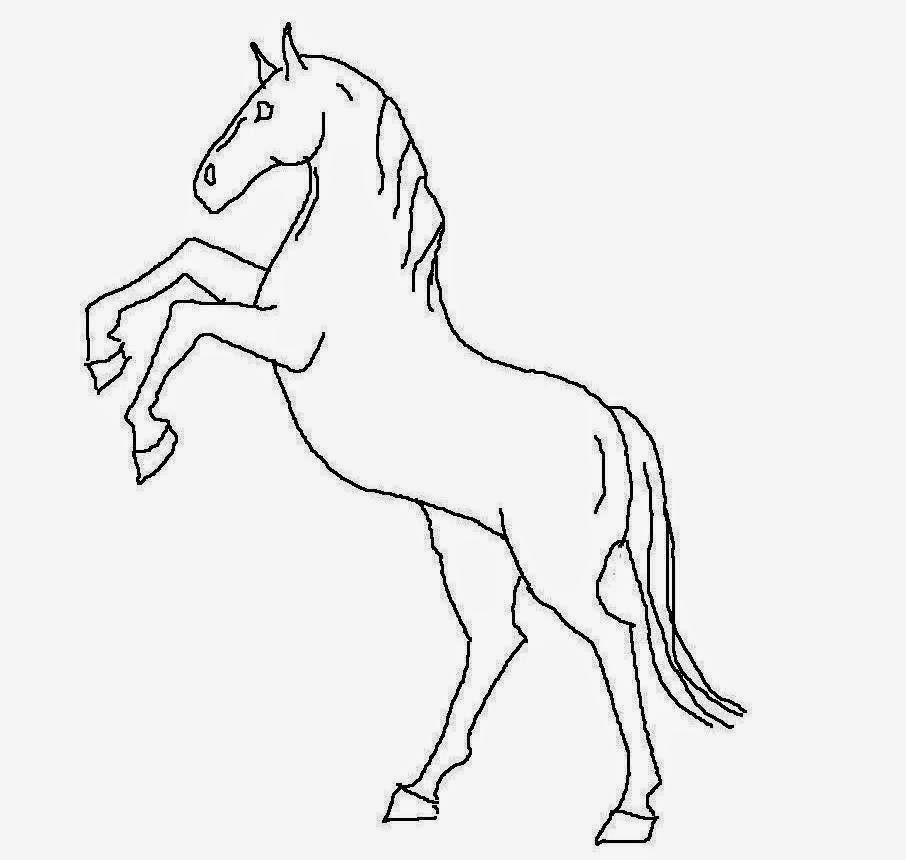 906x860 Colour Drawing Free Hd Wallpapers Horse For Kids Coloring Page