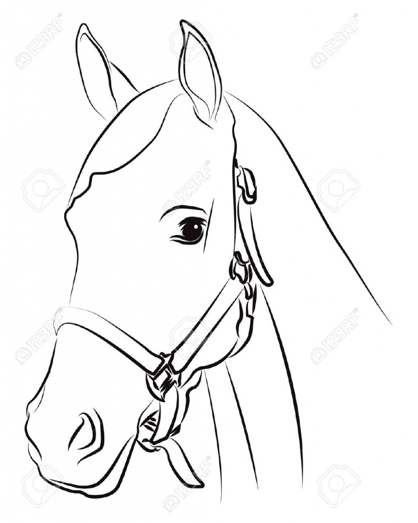 818x1024 Horse Head Drawing Outline