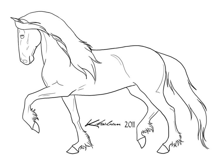 736x556 Pictures Line Drawings Of Horses,