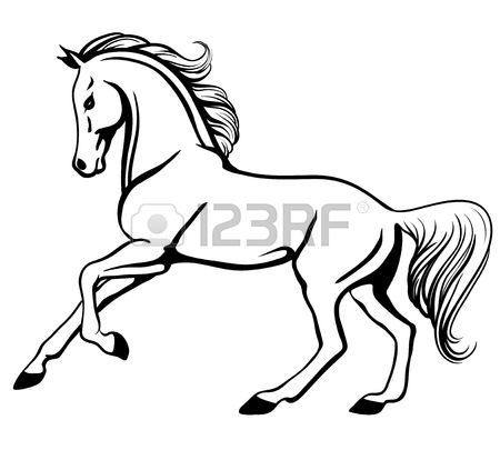 450x405 Vector Outline Illustration Of Beautiful Arabian Horse Royalty